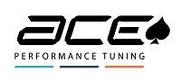 ACE_logo_large.2